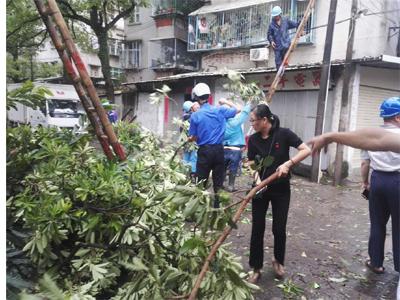 金山街道积极开展防御台风消除灾痕工作